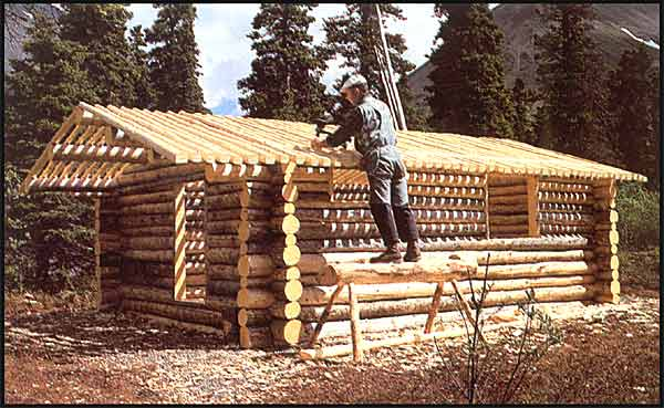 The story of dick proenneke and how he built a cabin by Land and cabins